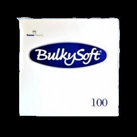 Papier-Servietten Beutel (100 STK)